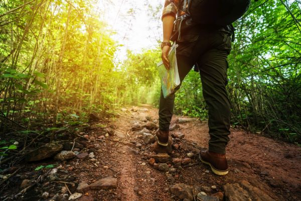 Uomo in tenuta da trekking cammina nella foresta