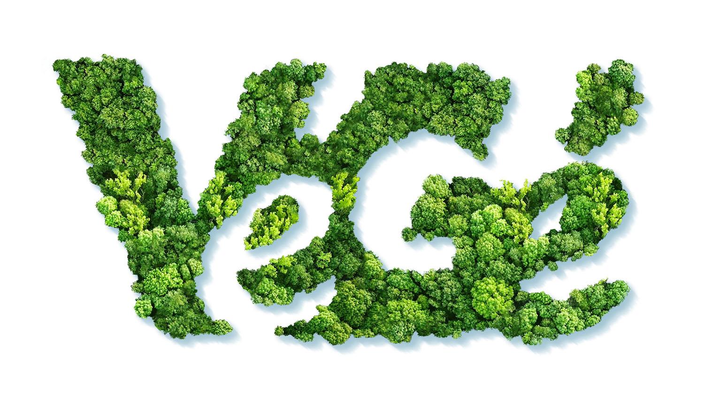 Logo Vegé sostenibilità